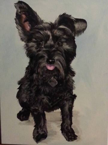 black dog2