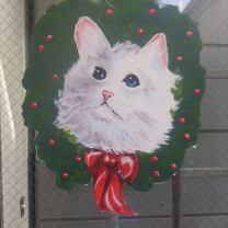 Cat 12.2016