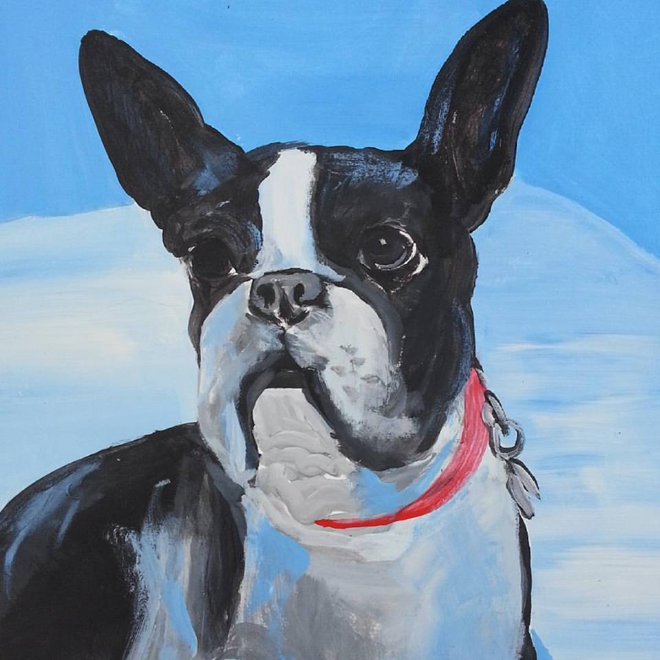 Dog-2 11.2015