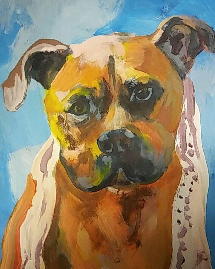 Dog-2 12.2017