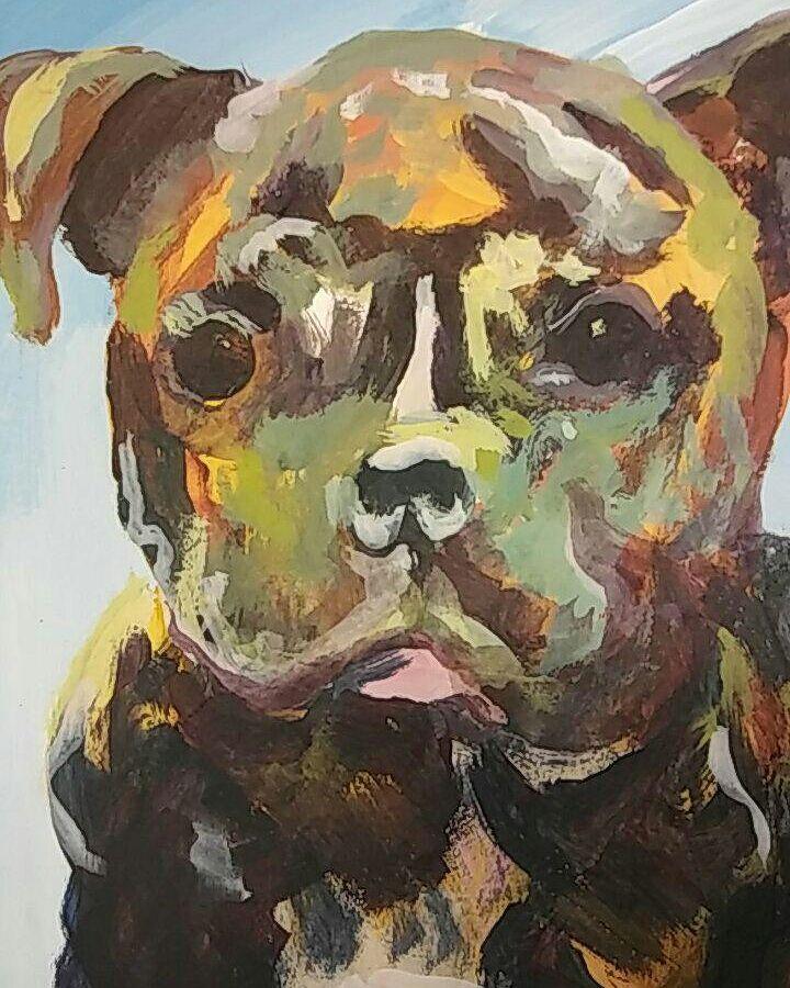 Dog-3 12.2017