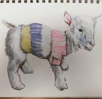 Goat 7.2016
