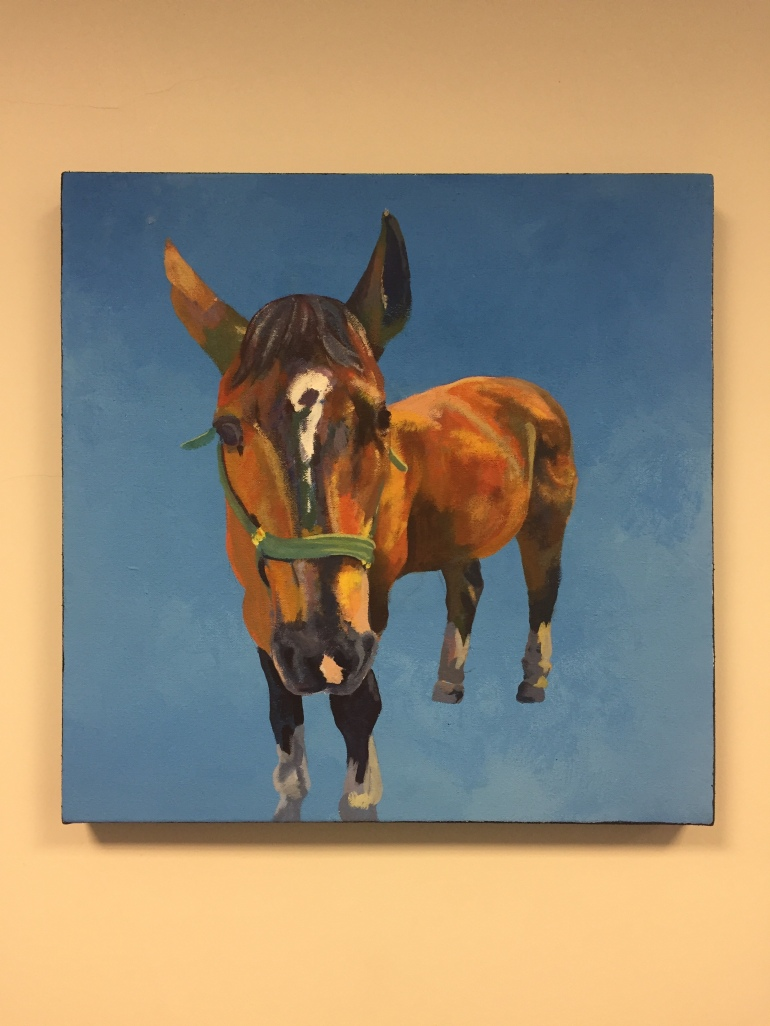 Marcel the horse