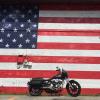 flag mural 5